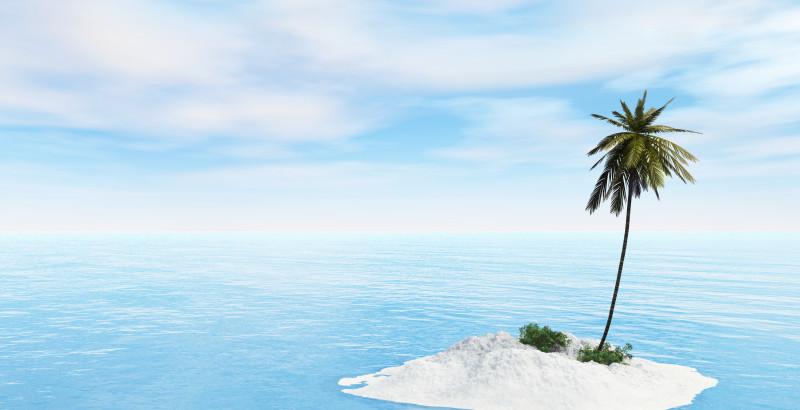 Mini Island with one Palm tree